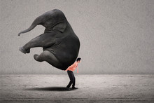 Business Leader Lifting Elepha...