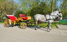 Horse-drawn Carriage With Horses