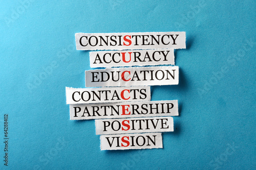Success acronym in business concept, words on cut paper hard lig Canvas Print