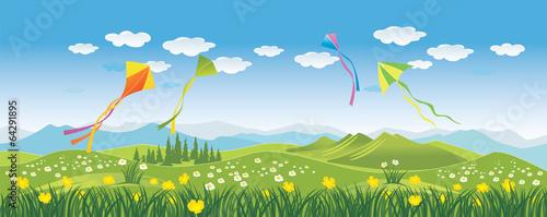Kites in the sky Wallpaper Mural