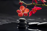 Fototapeta Orchid - Still life with branch red orchid with therapy stones