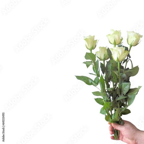 Fotografie, Tablou  White roses.