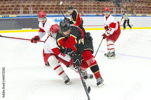 Plakat Hokej