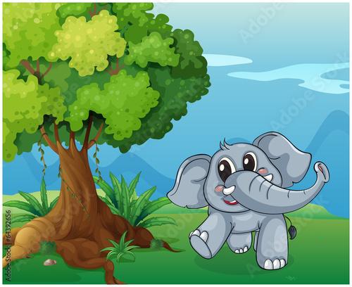 Wall Murals Cats An elephant beside the tree