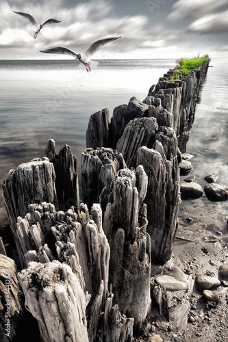 falochrony-na-plazy-nad-morzem-baltyckim