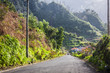Empty typical road in Madeira island, Portugal