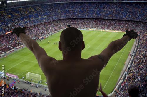 Happy soccer fans Poster