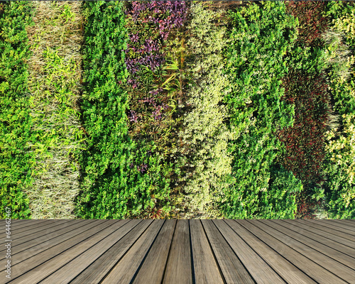 Poster Jardin flower and plant wall vertical garden