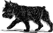 Walking Terrier