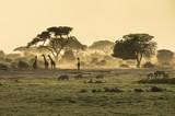 Fototapeta Sawanna - Silhouette di giraffe