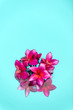 Red frangipani Plumeria flowers over shiny water background-1