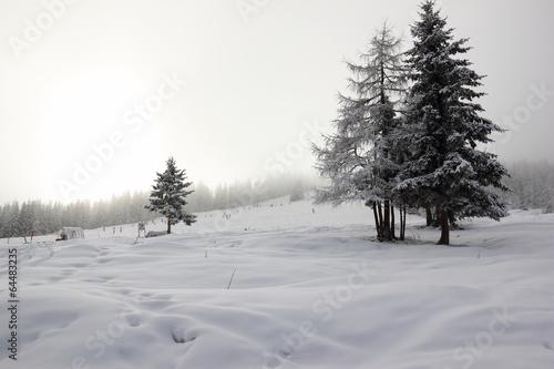 Fotografie, Obraz  Ski resort Zillertal Arena. Gerlos, Austria.