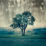 A single tree represent loneliness and sadness - 64485400