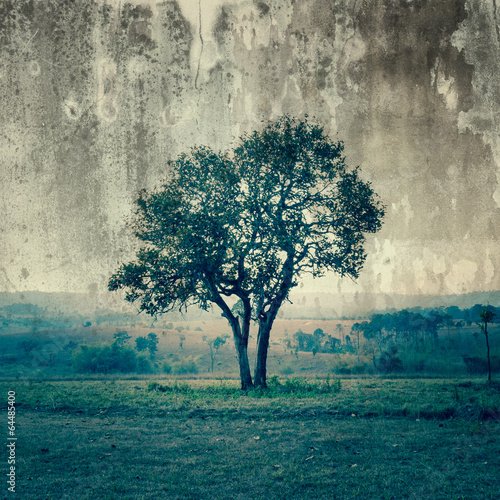 Pojedyncze drzewo reprezentuje samotność i smutek
