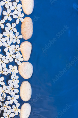 Flowers and stones in the water #64486277