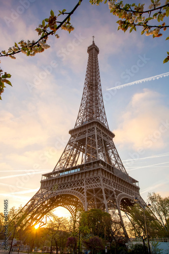 Photo Stands Eiffel Tower Eiffel Tower during spring time in Paris, France