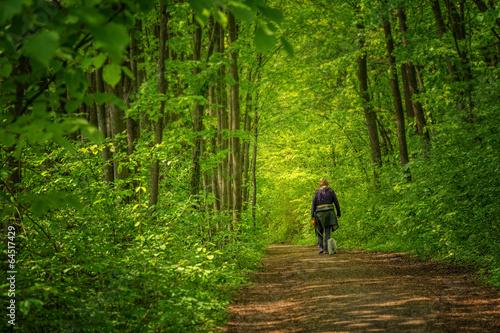 Acrylic Prints Horseback riding Spaziergang im Wald