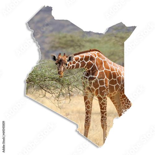Kenya map with giraffe Poster