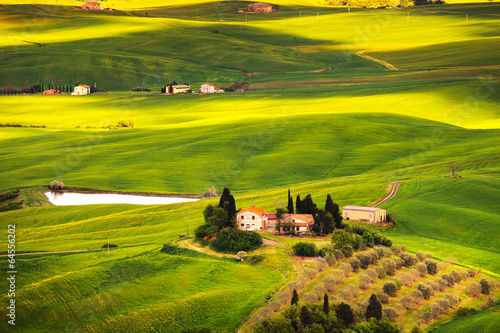 Poster Lime groen Pienza, rural sunset landscape. Countryside farm and green field