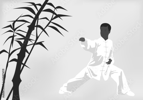 The man engaged kung fu on a black white background Wallpaper Mural