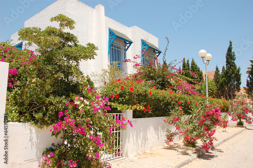 Fototapety, obrazy: Old town, traditional architecture in Tunisia