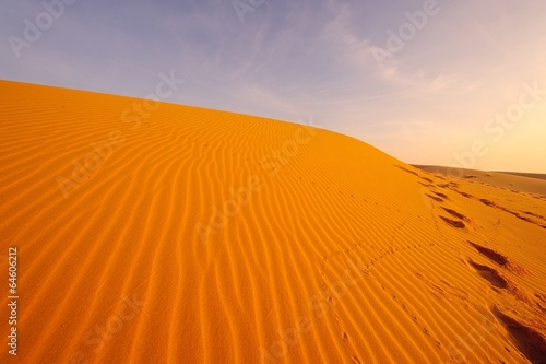 Poster de jardin Desert de sable Desert Landscape