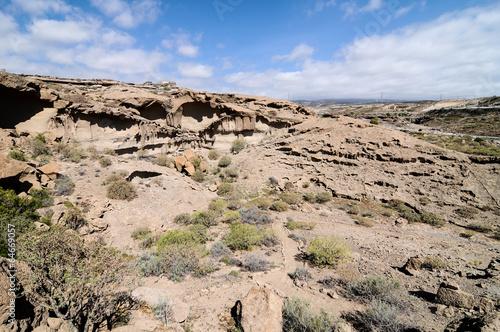 suchy-krajobraz