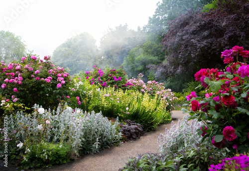 Foto op Canvas Tuin Art flowers in the morning in an English park