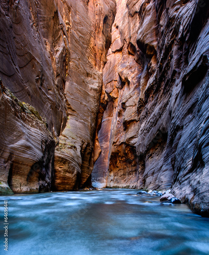 Foto op Plexiglas Natuur Park Virgin River flows through The Narrows of Zion Canyon National p