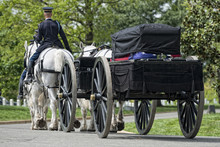US Army Marine Funeral