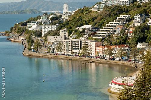 Tuinposter Nieuw Zeeland Wellington's Oriental Bay