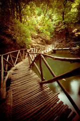 Wooden Footbridge Through Forest