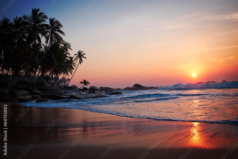 foto auf acrylglas tropical beach nikkel. Black Bedroom Furniture Sets. Home Design Ideas
