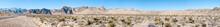 Cactus In Desert, Death Valley...
