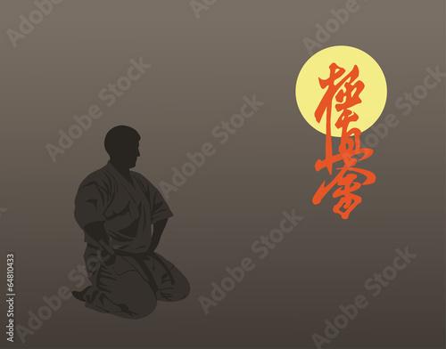 Fotografie, Obraz  Karate