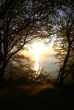 Osuwisko na plaży