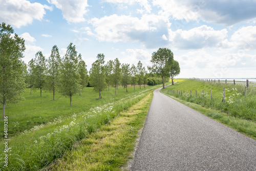 Foto op Canvas Olijf Curved country road along a Dutch dike