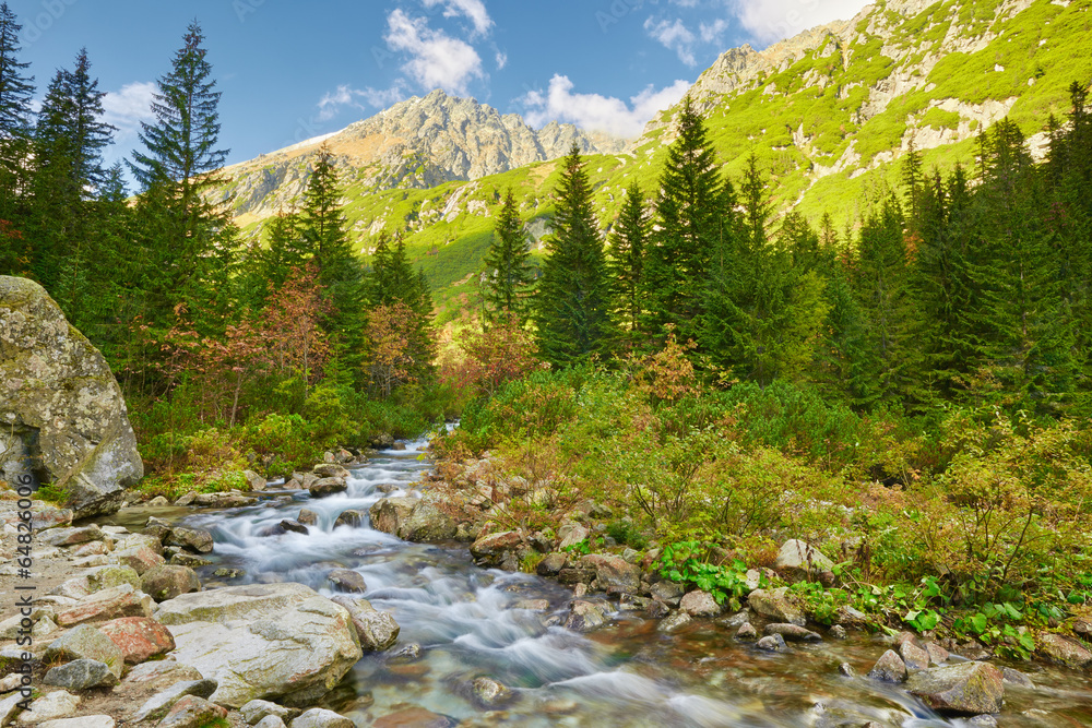 Fototapeta The Roztoka Stream. The High Tatras, Carpathian Mountains.
