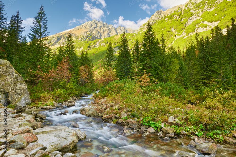 Fototapety, obrazy: The Roztoka Stream. The High Tatras, Carpathian Mountains.