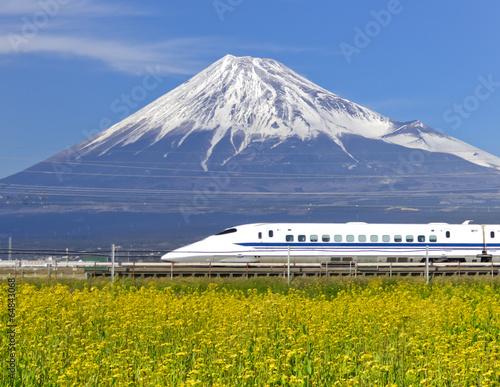 Fotografie, Obraz  菜の花畑を疾走する新幹線