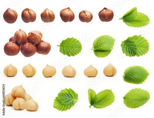 Papel de parede Forest hazelnuts isolated