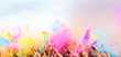 canvas print picture - Holi Festival