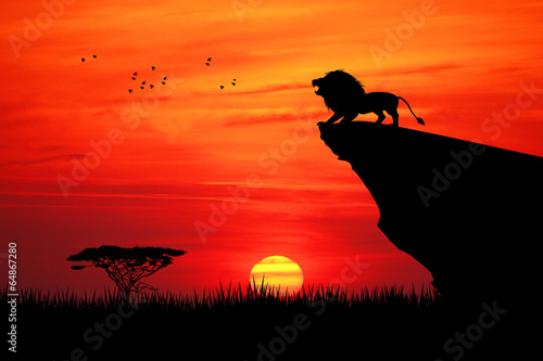 Fotobehang Baksteen Lion on rope at sunset