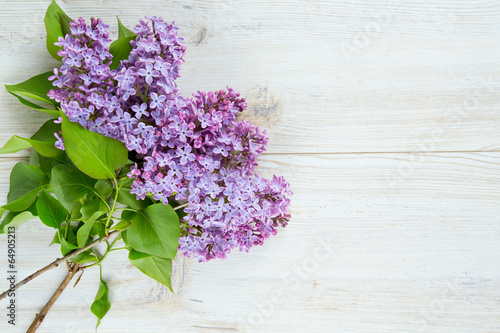 Foto op Canvas Lilac beautiful lilac on white wooden surface