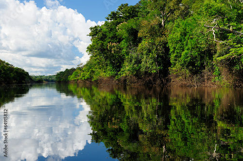 Foto  Amazon river landscape in Brazil