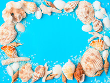 Frame From Assorted Seashells ...