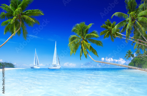 Staande foto Strand Sailboats on beach and palm tree