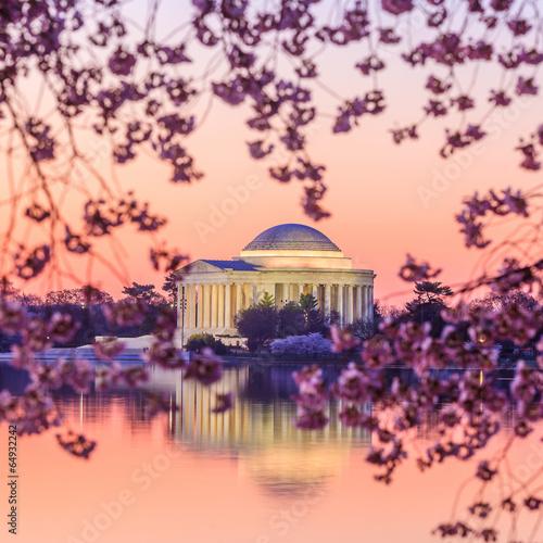 Aluminium Prints the Jefferson Memorial during the Cherry Blossom Festival