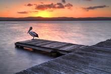 Sunset At Long Jetty, NSW Aust...