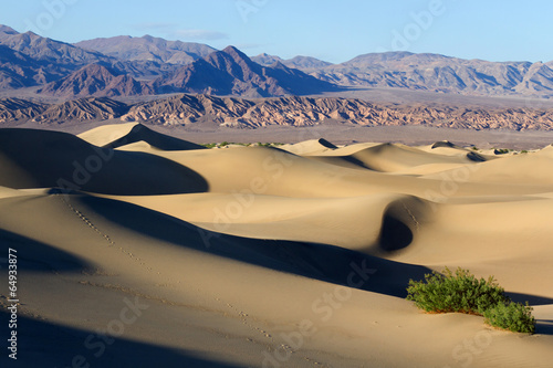Poster de jardin Desert de sable Death Valley National Park